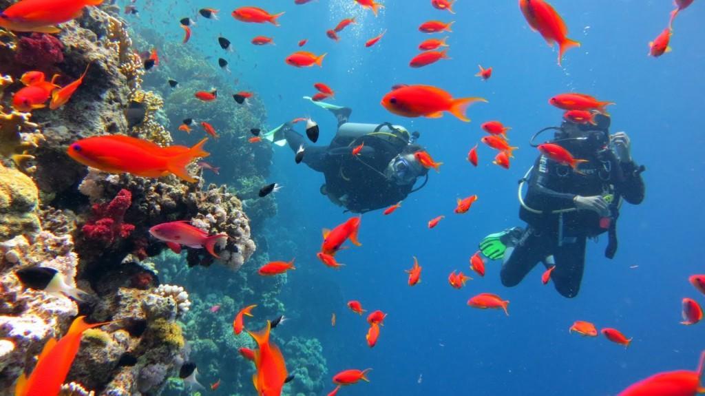 Sarm-El-Seyh-deniz