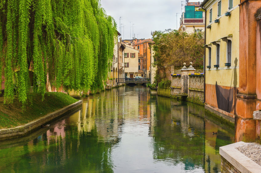 66186570 - the northern italian town of treviso in the province of veneto, it is located close to treviso, padua and, vicenza